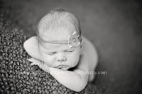 Newborn Photographer Pensacola FL